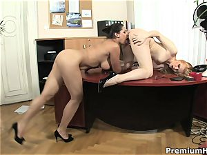 honeys gets bare and porking in office